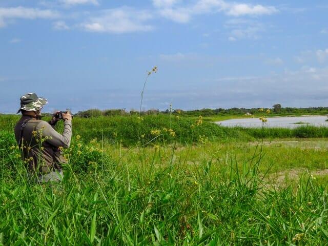bird watching in cambridgeshire
